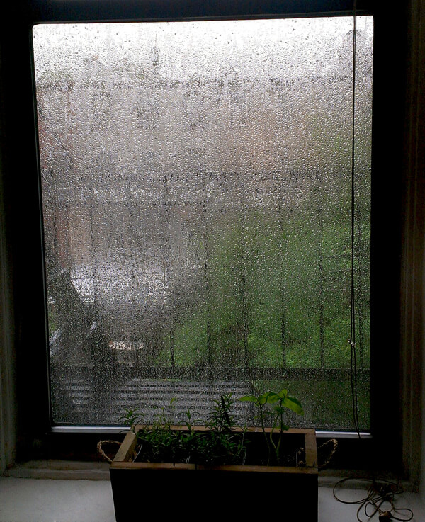 View from our kitchen window, it rained non-stop for a whole day.
