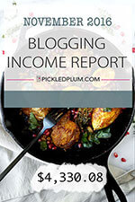 NOVEMBER BLOG INCOME REPORT - 2016