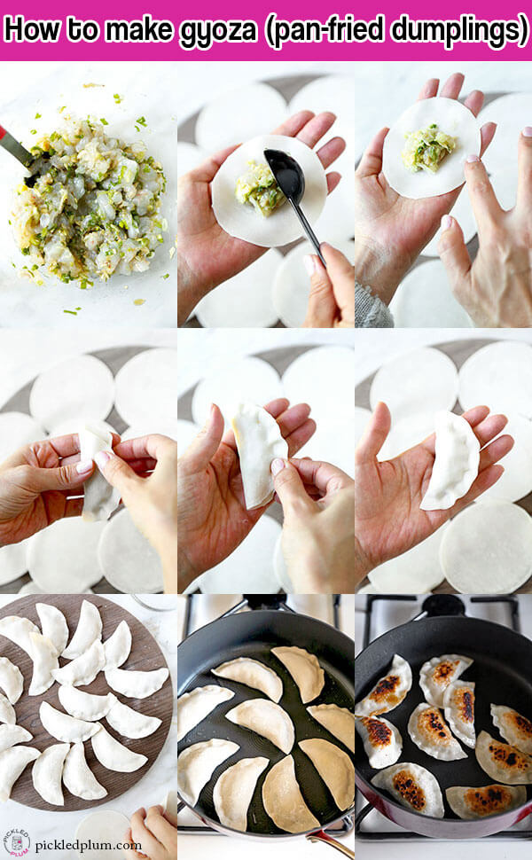 How to make gyoza - step by step images showing how to make yummy shrimp gyoza - pickledplum.com