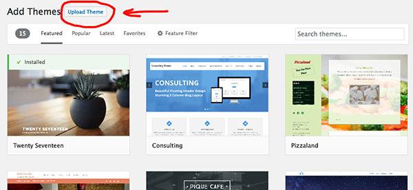 Installing a premium WordPress theme